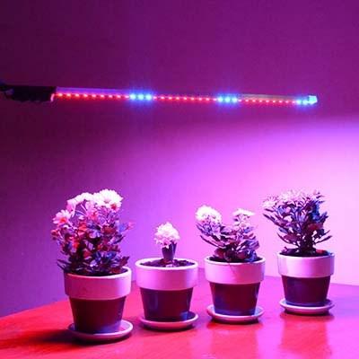 Для растений