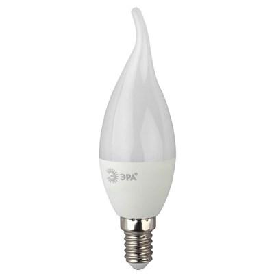 Лампа светодиодная ЭРА E14 7W 4000K матовая LED BXS-7W-840-E14 Б0028483 - фото 619194