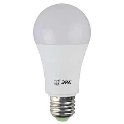 Лампа светодиодная ЭРА E27 15W 4000K матовая LED A60-15W-840-E27 Б0033183 - фото 619864