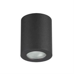 Потолочный светильник Odeon Light Aquana 3572/1C