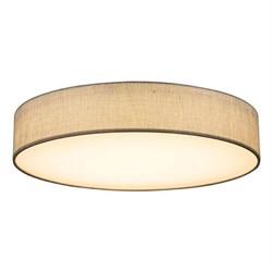 Потолочный светодиодный светильник Globo Paco 15185D4
