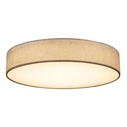 Потолочный светодиодный светильник Globo Paco 15185D5