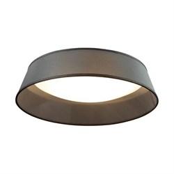 Потолочный светильник Odeon Light Sapia 4158/5C