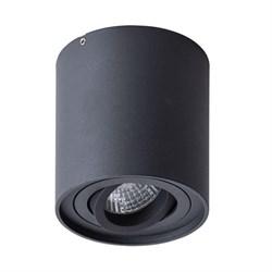 Потолочный светильник Arte Lamp Falcon A5645PL-1BK