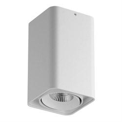 Потолочный светодиодный светильник Lightstar Monocco 052336