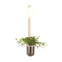 Настенный светильник Odeon Light Flower 4682/1WB