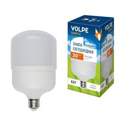 Лампа LED сверхмощная E27 30W 6500K LED-M80-30W/DW/E27/FR/S UL-00002942