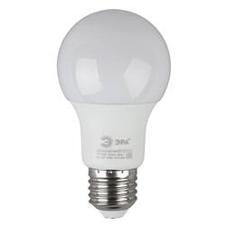 Лампа светодиодная ЭРА E27 6W 2700K матовая ECO LED A60-6W-827-E27 Б0019064
