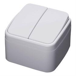 Выключатель двухклавишный Feron Stekker Basic PSW104220 39032