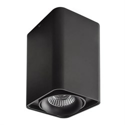 Потолочный светильник Lightstar Monocco 212537
