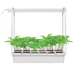 Светодиодный светильник для растений Uniel Minigarden ULT-P34-10W/SPBR IP20 White 12 UL-00007471