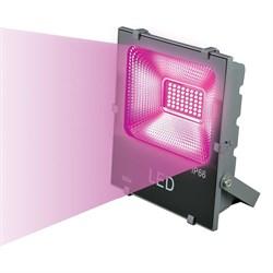 Прожектор светодиодный Uniel ULF-P41-50W/SPBR IP65 170-265В Grey UL-00007466