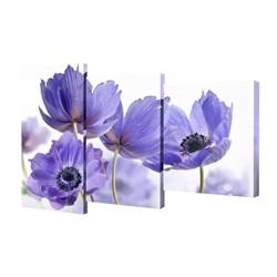 Мини модульная картина Toplight Цветы 50х78см TL-MM1020