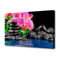 Холст Toplight Цветы 50х75х3см TL-H3014