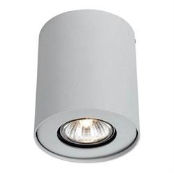 Потолочный светильник Arte Lamp Falcon A5633PL-1WH