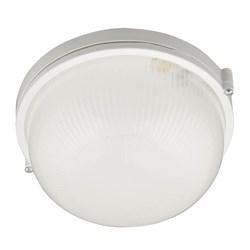 Потолочный светильник Uniel UWL-R01 100W/E27 IP54 White UL-00006771
