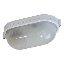 Настенно-потолочный светильник ЭРА Акватермо НБП 04-60-001 Б0048423