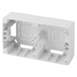 Коробка для накладного монтажа 2-постовая ЭРА 12 12-6102-01 Б0043170