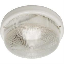 Настенно-потолочный светильник Feron НБО 05-100-001 41403