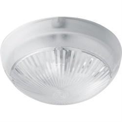 Настенно-потолочный светильник Feron НБП 06-60-001 41401